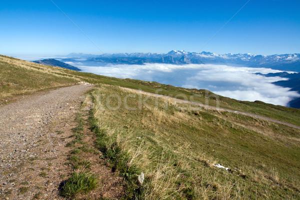 Beautiful view of the swiss alps  Stock photo © elxeneize