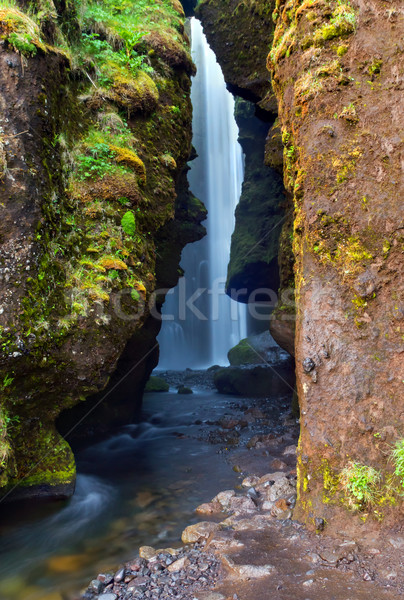 Gljufrafoss waterfall in Iceland Stock photo © elxeneize