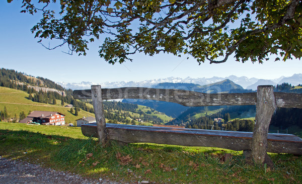 Nice viewpoint in the alps Stock photo © elxeneize