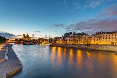 Rio Paris madrugada la Catedral de Notre Dame céu Foto stock © elxeneize