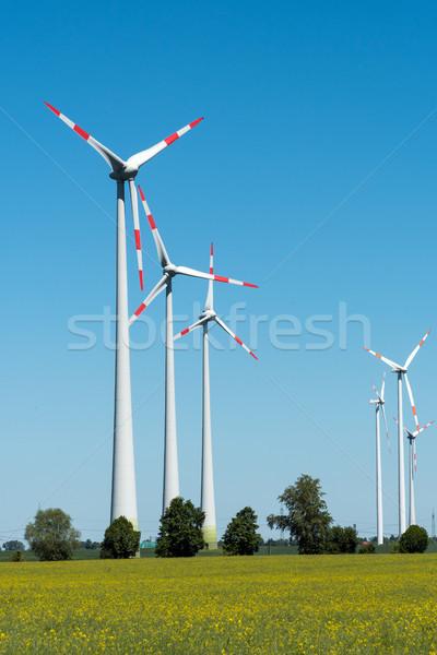 Wind wheels in the fields in Germany Stock photo © elxeneize