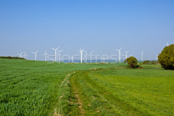 Windpark in the green fields Stock photo © elxeneize