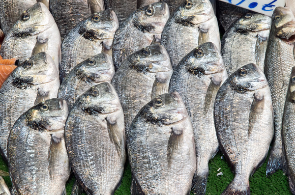 Fresh bream for sale at a market Stock photo © elxeneize
