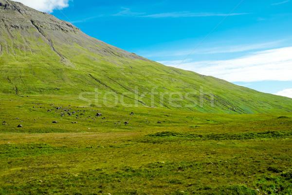 Green mountain in Scotland Stock photo © elxeneize