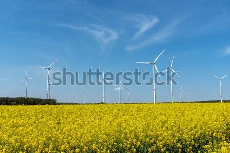 Rural landscape with windwheels Stock photo © elxeneize