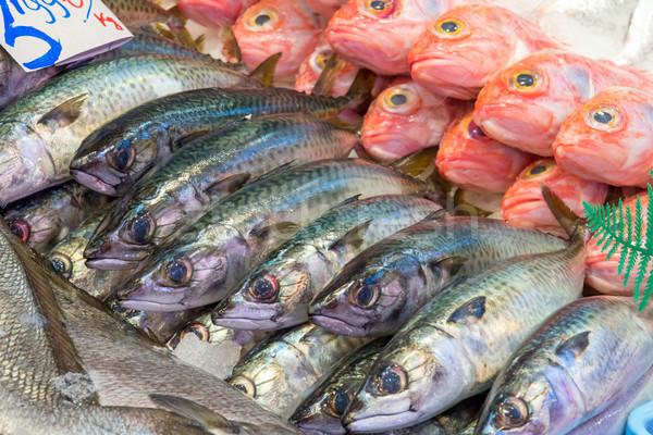 свежие рыбы продажи рынке Мадрид Испания Сток-фото © elxeneize