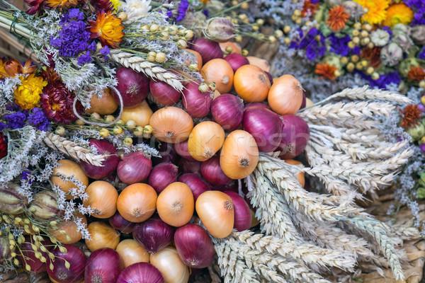 Decorazione fiori cipolle festival cipolla mais Foto d'archivio © elxeneize