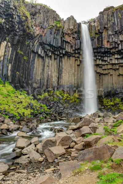 Waterval IJsland beroemd zuidelijk hemel groene Stockfoto © elxeneize
