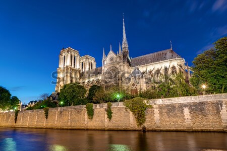 Notre-Dame and the River Seine Stock photo © elxeneize