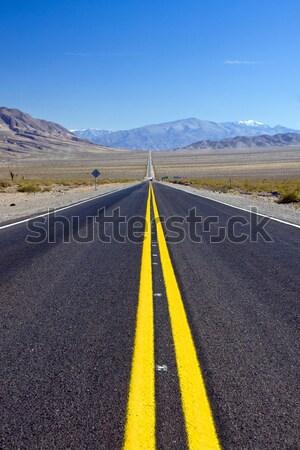 Arjantin kuzey uzun düz yol Stok fotoğraf © elxeneize