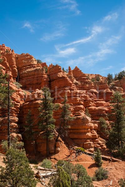 Kırmızı kayalar kumtaşı Utah çöl ağaçlar Stok fotoğraf © emattil