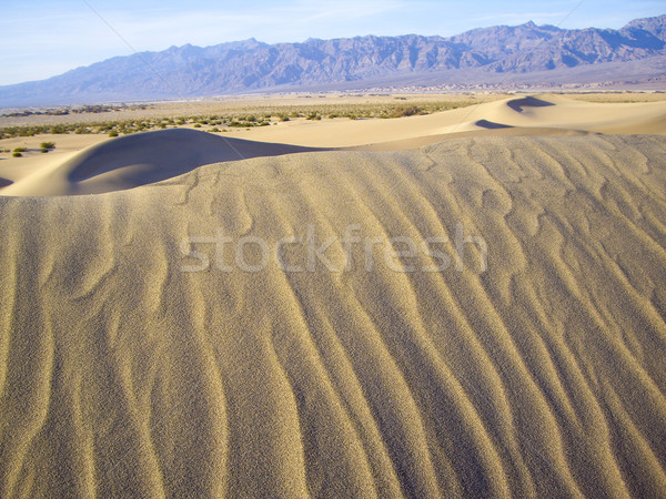 Shifting Sands in Death Valley Stock photo © emattil