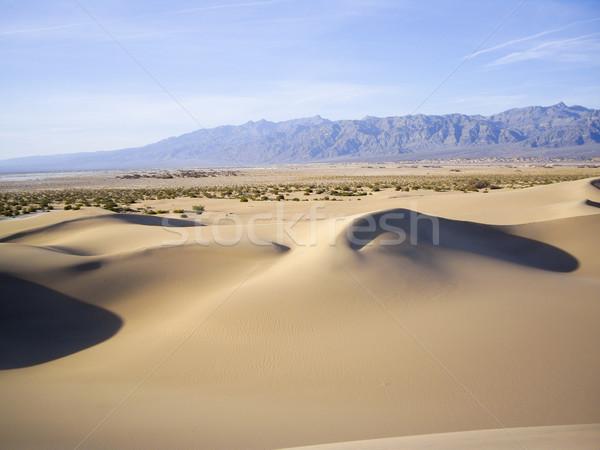 Ombres mort vallée faible lumière sable Photo stock © emattil