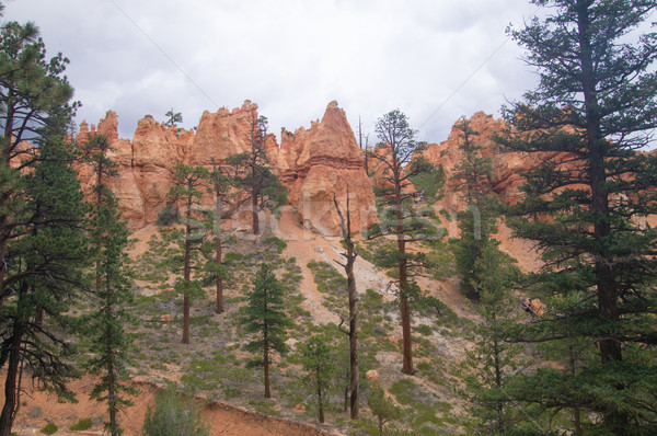 Overcast sky at Bryce Canyon Stock photo © emattil