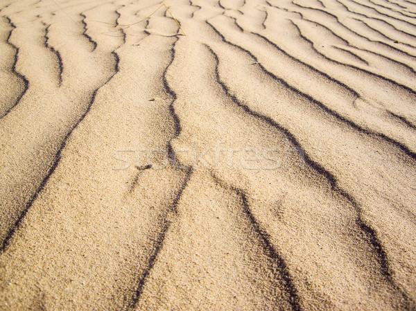 Gebakken aarde zand woestijn zuidwest Stockfoto © emattil