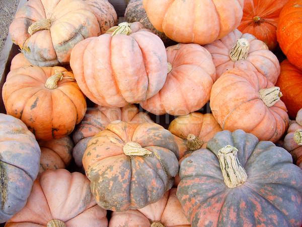 Groene oranje seizoen- vruchten boerderij markt Stockfoto © emattil