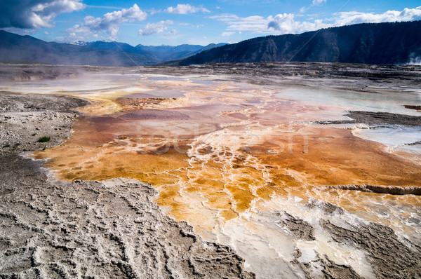 Geological wonders of Mammoth Hot Springs Yellowstone Park Stock photo © emattil