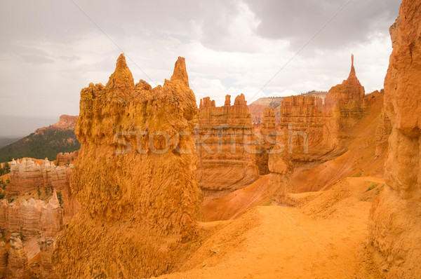 Sandstone sculptures after the rain in Bryce Canyon Stock photo © emattil