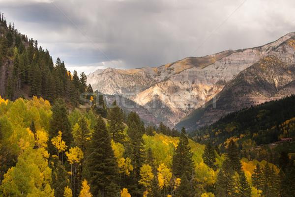 Regen Colorado bergen storm wolken bomen Stockfoto © emattil