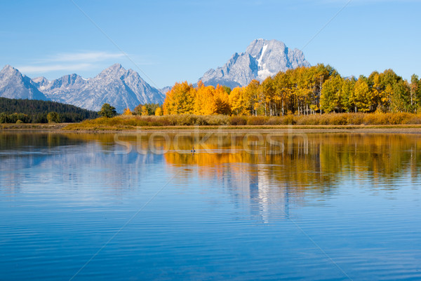 Vogel meer park reflectie water reizen Stockfoto © emattil