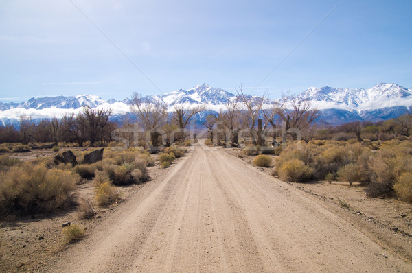 Dirt road leads to snow covered Sierra Nevada mountains in Sprin Stock photo © emattil