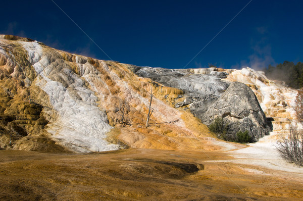 Geology of thermal hot springs at Mammoth Yellowstone Stock photo © emattil