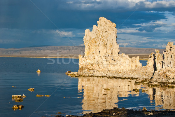 Mono Lake Relections Stock photo © emattil