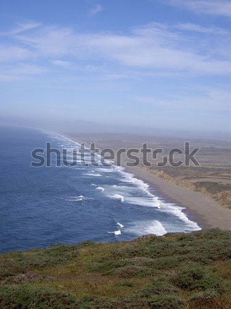 Wild shoreline Stock photo © emattil