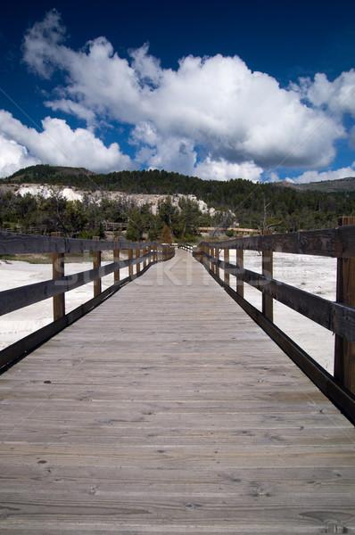 Boardwalk at Mammoth Hot Springs Stock photo © emattil