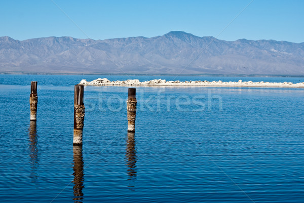 Posts in water at Salton Sea Stock photo © emattil
