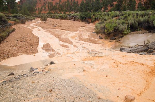 Flash наводнения пустыне лет вызывать красный Сток-фото © emattil