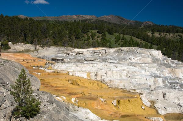 Hot natuur oranje witte USA stoom Stockfoto © emattil