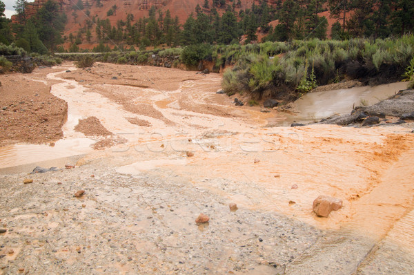 泥だらけの 水 フラッシュ 洪水 ユタ州 砂漠 ストックフォト © emattil