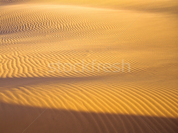 Lines in the sand Stock photo © emattil