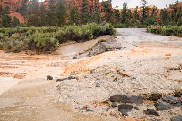 Lata burzy flash czerwony kanion Utah Zdjęcia stock © emattil