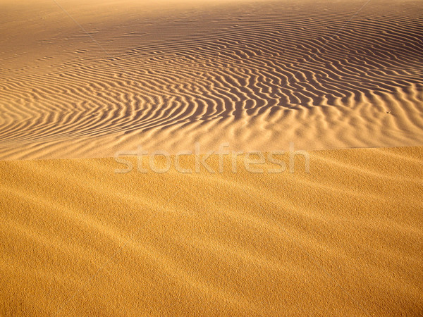 Golden Sands Stock photo © emattil