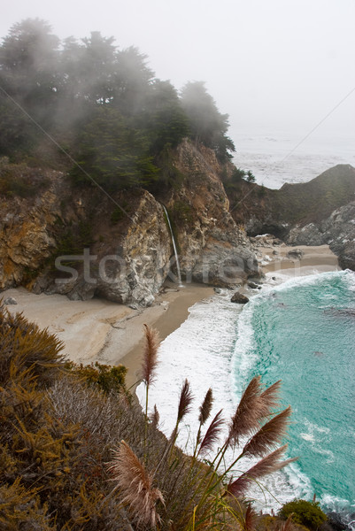 Paradise Cove Stock photo © emattil