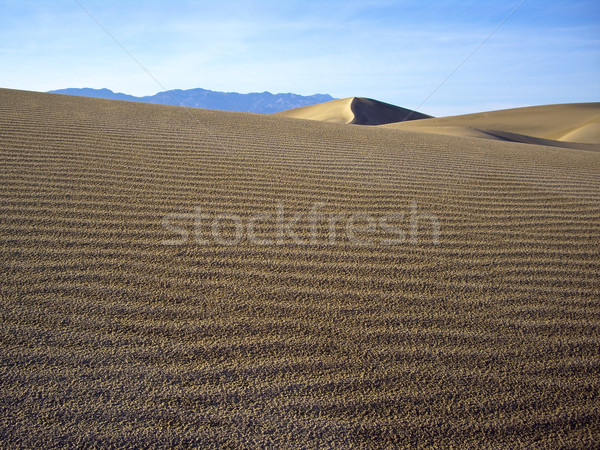 Sand dune slopes of Death Valley Stock photo © emattil