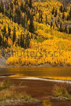 Yansımalar Colorado su dağ turuncu renk Stok fotoğraf © emattil
