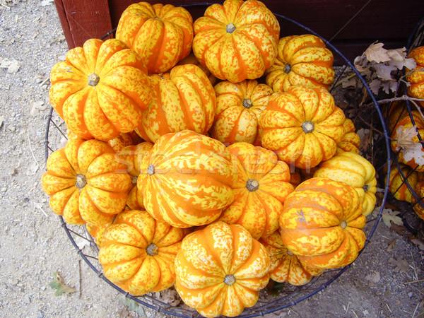 Turuncu pazar sezon güz meyve çiftlik sonbahar Stok fotoğraf © emattil