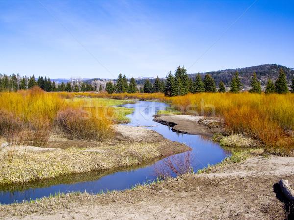 Stockfoto: Zomer · kleur · rivier · park · USA · hemel