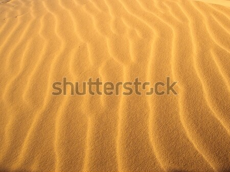 Light Waves Stock photo © emattil