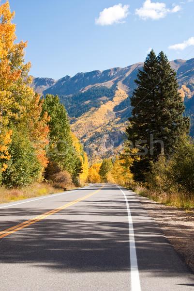Hoog weg Colorado vallen berg bos Stockfoto © emattil