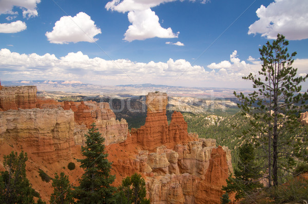 Zomer canyon park Utah USA hemel Stockfoto © emattil