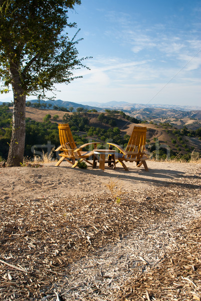 Seating for Two in California wine country Stock photo © emattil