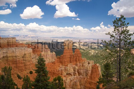 Görmek kanyon park Utah ABD çöl Stok fotoğraf © emattil