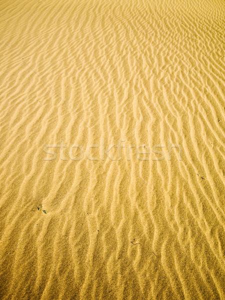 Golden Sand River  Stock photo © emattil