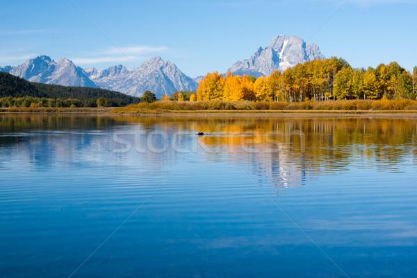 ムース 湖 水 旅行 ストックフォト © emattil
