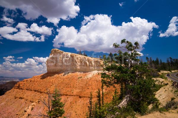 Schilderachtig canyon park Utah USA hemel Stockfoto © emattil