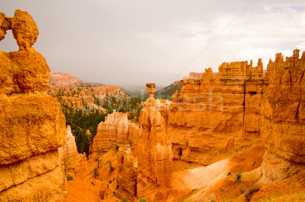 Summer rain storm in Bryce Canyon National Park Stock photo © emattil